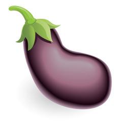 aubergine eggplant or guinea squash vector image vector image