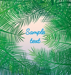 Palm leaves background exotic resort holidays sea vector