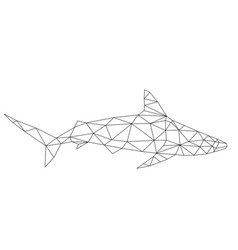 polygon shark vector image vector image