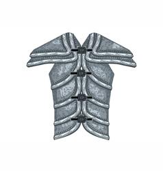 Armour vector