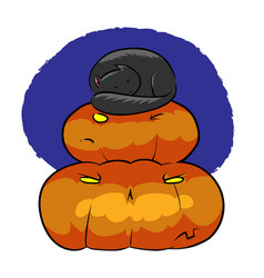 cat sleeping on pyramid of pumpkins vector image
