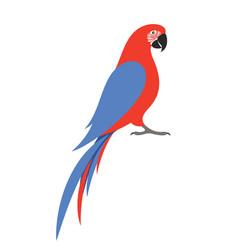 Parrot macaw vector
