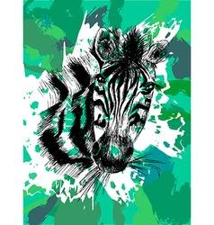 Zebra in eps vector