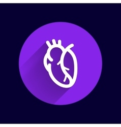 Red human heart icon cardio cardiovascular vector