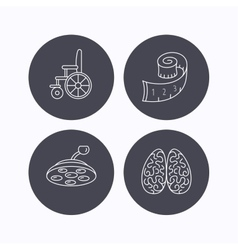 Wheelchair neurology and weight loss icons vector
