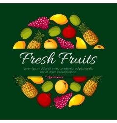 Fresh fruits product poster design vector image
