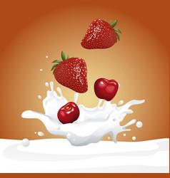milk and berries flyer vector image