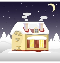 Christmas house on a background of winter night vector image