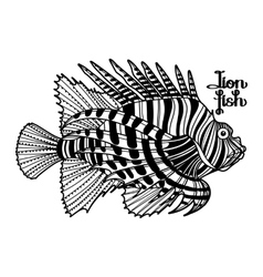 Graphic lion fish vector
