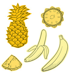 With juicy tropical fruits vector