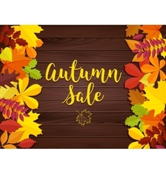 Autumn sale vintage typography poster on vector