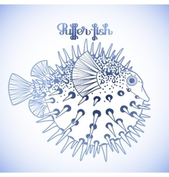 Graphic puffer fish vector image