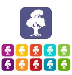 Oak icons set vector
