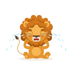 sad little baby lion cartoon character sitting on vector image