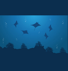 Silhouette of stingray underwater landscape vector