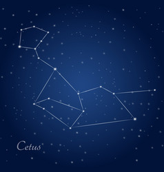 Cetus whale constellation at starry night sky vector