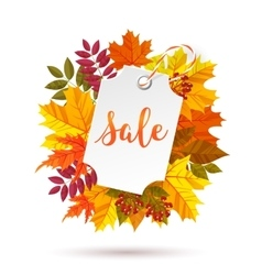 Autumn sale label vector image vector image