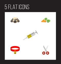 flat icon pets set of root vegetable kitty collar vector image vector image