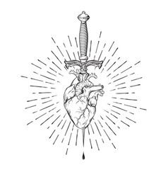 Human heart pierced with ritual dagger vector