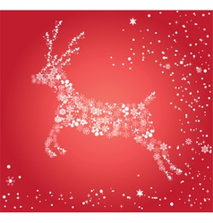 red deer vector image