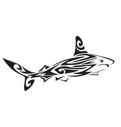 shark polynesian tattoo vector image vector image