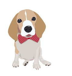 Cute Queen Elizabeth Pocket beagle vector image