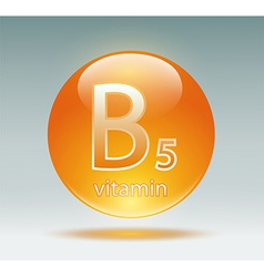 vitamin B5 vector image