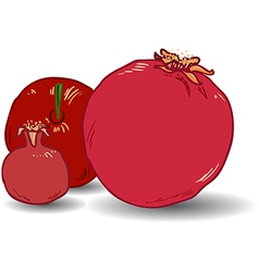 Pomegranates for rosh hashanah 1 vector