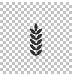 Wheat sign  dark gray icon on vector