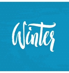 Hand Drawn Calligraphy Winter handlettering vector image vector image