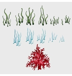 Set of underwater grass and coral reef elements vector image