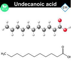 Undecanoic acid atomic structure vector image