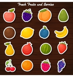 Fruits stickers icon set vector
