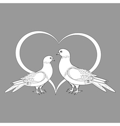 A monochrome sketch of two doves and a heart vector