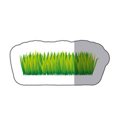 Color tall grass icon vector