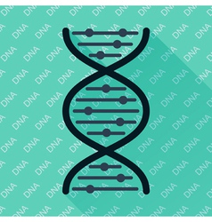 Dna flat icon vector