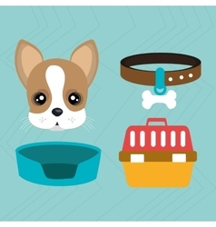 Dog plate collar vector