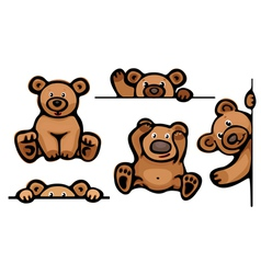 funny brown bears vector image vector image