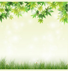Spring meadow with green leaves background vector