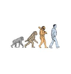 Human evolution walking drawing vector
