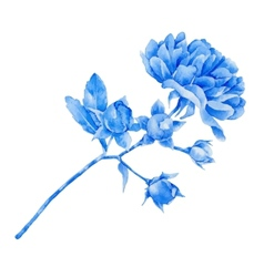 Blue rose vector