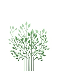 Shrubs vector