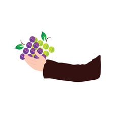 Grape in hand vector