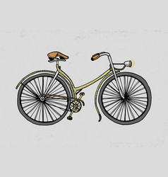 bicycle bike or velocipede travel vector image