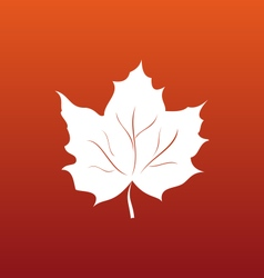Maple leaf on orange background vector