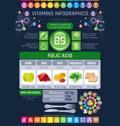 folic acid vitamin b9 rich food icons healthy vector image vector image