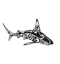 shark polynesian tattoo vector image