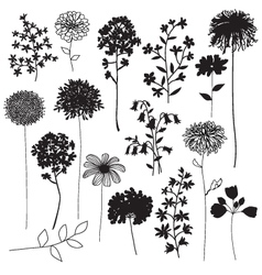 Botanical silhouettes vector