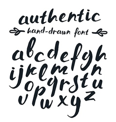 Handwritten brush script vector