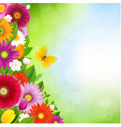 border flowers with butterfly vector image vector image